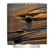 Golden Sand  Shower Curtain
