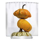 Gourds And Pumpkins Shower Curtain