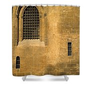 Granada Cathedral Shower Curtain