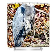 Great Blue Shower Curtain