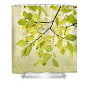Green Foliage Series Shower Curtain