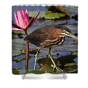 Green Heron Photo Shower Curtain