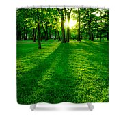 Green Park Shower Curtain