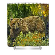 Grizzly Study 2 Shower Curtain