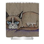 Grumpy Cat Having Some Rest Shower Curtain