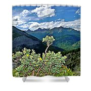 Hardy Shrub Shower Curtain