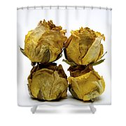 Heap Of Wilted Roses Shower Curtain