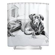 Hershey Shower Curtain