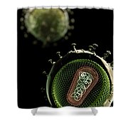 Hiv Structure Shower Curtain