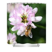 Honeybee On Crown Vetch Shower Curtain