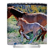 Horse's Shower Curtain