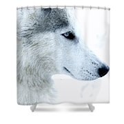 Husky Shower Curtain
