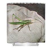 IImages From The Pantanal Shower Curtain