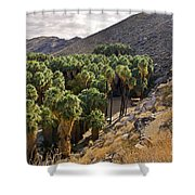 Indian Canyons - California Shower Curtain