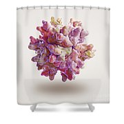 Infectious Bursal Disease Virus Shower Curtain