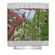 Ivy Courtyard Shower Curtain