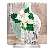 Jasmine Shower Curtain