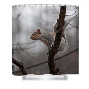 Jumping Squirrel Shower Curtain