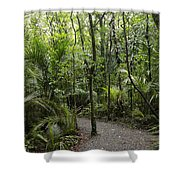 Jungle Trail Shower Curtain
