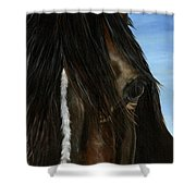 Kindred Soul Shower Curtain