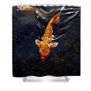 Koi Carps Shower Curtain