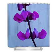 Lavender Flowers Shower Curtain