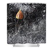 Leaf On Ice Shower Curtain