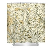 Leaves From Nature Shower Curtain