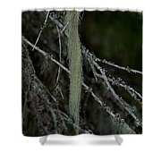 Lichen Shower Curtain