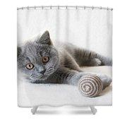 Little Friend Shower Curtain