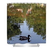 Living In Reflections Shower Curtain