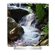 Lower Granite Falls Shower Curtain