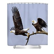 Majestic Beauty 2 Shower Curtain