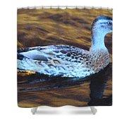 Mottled Duck Shower Curtain