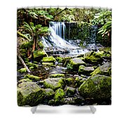 Mt Field National Park Shower Curtain
