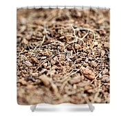 Mulch Shower Curtain