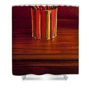 Multi Colored Paint Brushes Shower Curtain