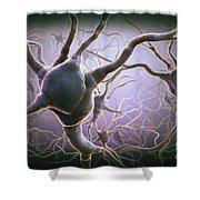 Neuron Shower Curtain
