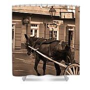 New Orleans - Bourbon Street Horse 3 Shower Curtain