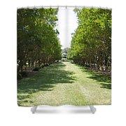 Norfolk Botanical Garden 2 Shower Curtain