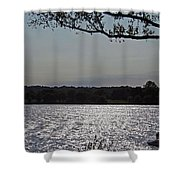 On A Glistening River Shower Curtain