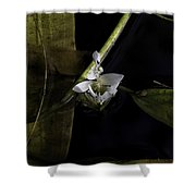 On Lily Pond Shower Curtain