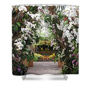 Orchid Display Shower Curtain