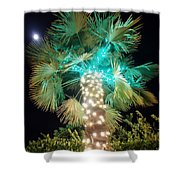 Outdoor Christmas Decorations Shower Curtain