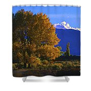 Owens Valley Fall Colors  Shower Curtain