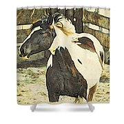 Painted Bronc Shower Curtain