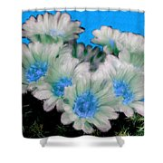 Painterly Cactus Flowers Shower Curtain