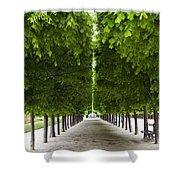 Palais Royal Trees Shower Curtain