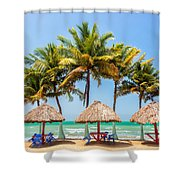 Palm Trees And Sea Shower Curtain