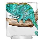 Parsons Chameleon Shower Curtain